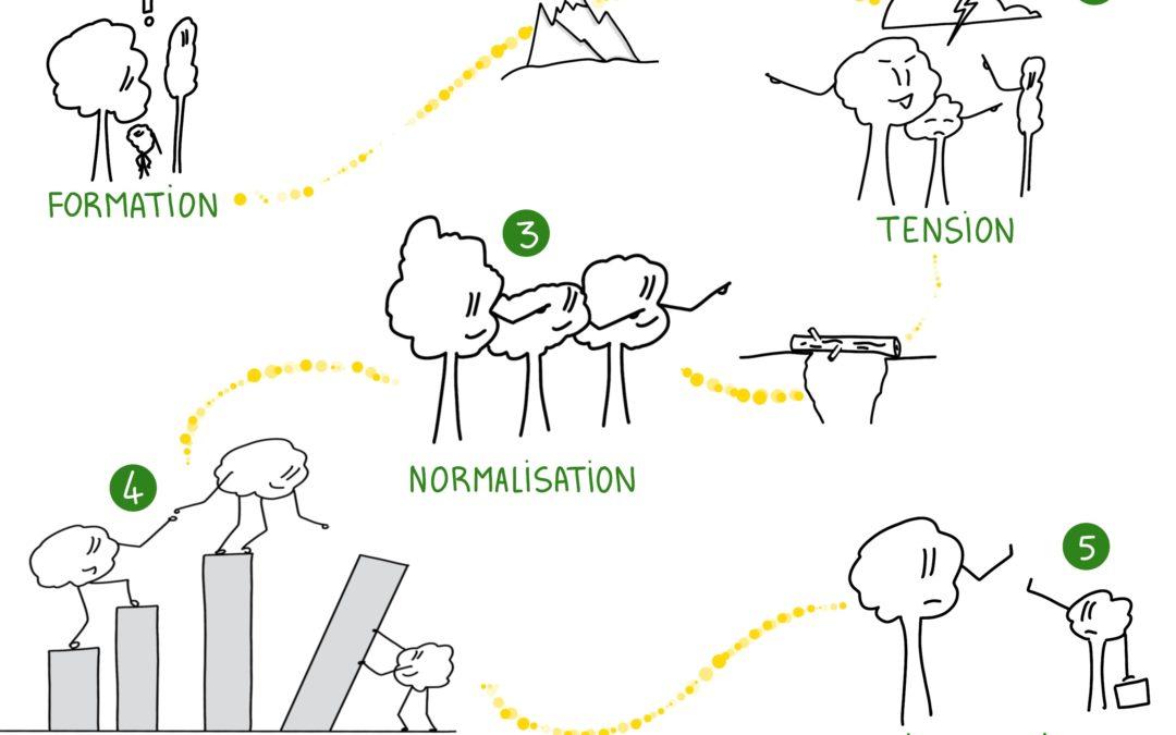 Témoignage : évaluer (et confronter) les visions sur le stade de développement de l'équipe